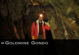 Link Goldmine Gondo