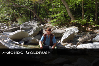 Link Gondo Goldrush
